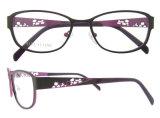 De nieuwe Frames van het Oogglas van het Titanium van het Frame van Eyewear van de Manier