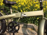 E-Bici pieghevole di vendita di qualità molto calda e buona con la gomma grassa