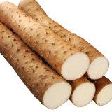 Выдержка Diosgenine 6%~98% батата 100% естественная одичалая