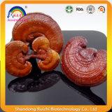 Весь грибок Ganoderma Lucidum Lingzhi для веса теряет