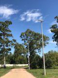 Il APP gestisce l'indicatore luminoso di via solare 90W per l'illuminazione strada/della strada principale