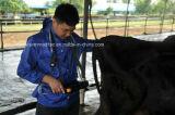 V5 ultra-som do veterinário do varredor do setor B/W