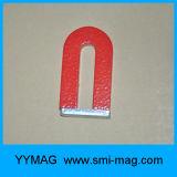 Ausbildungs-Magnet-Alnico für Schulkinder
