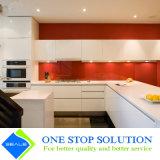 Armadi da cucina domestici moderni della mobilia di nuovo disegno (ZY 1036)