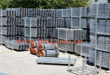 StahlPlank für Scaffolding Roll Forming Production Machine Thailand