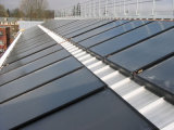 Raggruppamento solare che riscalda il collettore della lamina piana