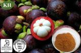 Mangostin alfa el 20%, el 40%, extracto del mangostán del 90%