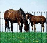 O melhor preço galvanizou os painéis usados resistentes da cerca dos rebanhos animais, cerca do gado, usada