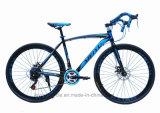 [700ك] طريق يتسابق درّاجة [متب] [موونتين بيك] ([ل--38])