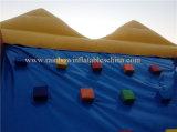 Heißes verkaufenInfltable Climbings&Hook u. Schleifen-Wand-Spiele (2 in 1 Sportspiel)