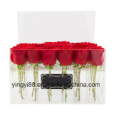 Nuovo contenitore acrilico libero su ordine di fiore
