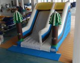 Acclamazione Amusement Snowy Inflatable di tema Slide da vendere