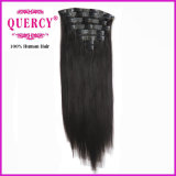 Hairの中国Supplier Wholesale Price PU Skin Weft Clip