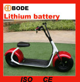새로운 리튬 건전지 1000W 전기 스쿠터