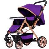 Guter Quality Spaziergänger für Taking Babies