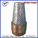 Válvula de cheque de cobre amarillo sin plomo de bronce sin plomo