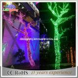 Indicatori luminosi di natale esterni impermeabili chiari dell'indicatore luminoso leggiadramente di colore verde LED di festa