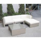 Самомоднейшая крытая Wicker напольная мебель (WS-06005)
