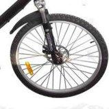 tipo E-Bicicletta della batteria al piombo 36V con Ce (JSL021)