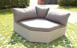 Angolo stabilito di figura di XL del sofà di vimini della mobilia del rattan del giardino di Modualr