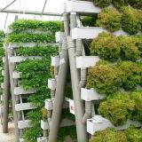 Tour végétale de culture hydroponique de serre chaude