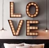 Le rétro métal d'ampoule de logo imperméable à l'eau de Shopfront marque avec des lettres la publicité décorative de signe