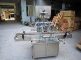 Il doppio dirige la macchina automatica del materiale di riempimento per l'inserimento di viscosità dell'imballaggio