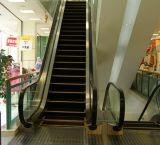 Beste Saller! De BinnenRoltrap van uitstekende kwaliteit van het Winkelcomplex