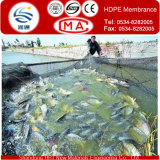 Waterproof Materialsの0.2-3.0mm HDPE Fish Water Pond Liner Geomembrane