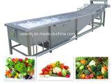 Machine populaire économies d'eau Air Bubble pour fruits et légumes Laveuse