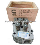 Globales Service Cummins Engine Parts 4CT Cylinder Head (3646324)