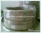 Шланг тефлона пробки нержавеющей стали Braided PTFE (SAE100 R14)