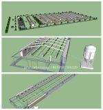 Attrezzature agricole complete del pollo da carne con la costruzione libera della tettoia del &Prefab di disegno