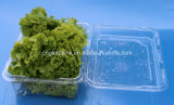 Rectángulo de empaquetado vegetal de empaquetado del envase de la bandeja de la fruta material de la categoría alimenticia de animal doméstico 750 gramos