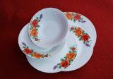 Insieme di ceramica del piatto/articolo da cucina di Hould della Camera