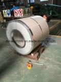 Vorgestrichene galvanisierte Stahlringe mit grünem Flweral Druck