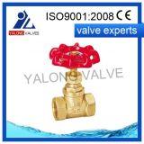 Soupape d'arrêt en laiton (YL301)