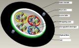De Optische Optische Vezel van de Buis GYXTW