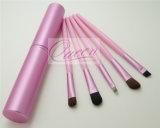 Métal Cas 5PCS Pink Eyeshadow Brush Kit