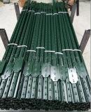 Poste peint vert en acier clouté américain de la frontière de sécurité T Post/1.33lb T