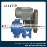 Pomp van de Dunne modder van het Omhulsel van de Zuiging van het eind de Horizontale Centrifugaal Gespleten die met het Model van Motoren wordt uitgerust 100HS