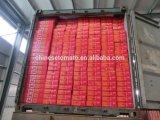 70g, 210g, goma de tomate conservada concentrada doble de 400 G de la marca de fábrica de Vego