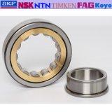Il cuscinetto a rullo cilindrico di NTN NSK Timken Nj312em C3, SKF ha affusolato Rolle che sopporta 31309