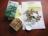 De natuurlijke Chinese Traditionele KruidenPillen van de Aanwinst van het Gewicht van de Ginsengen van de Geneeskunde