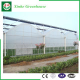 Sistema di irrigazione a pioggia con la pellicola/serra di plastica per le verdure/frutta/fiore