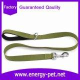Productos del animal doméstico de la correa de la fuente de la fábrica del correo del perro