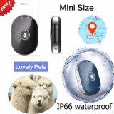 O perseguidor o mais atrasado do GPS do Portable para o animal de estimação/cão Pm01