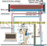 La bobina de cobre de acero inoxidable calentador de agua solar