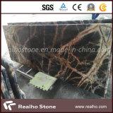 Controsoffitto di marmo verde scuro della foresta pluviale di pietra naturale per le cucine