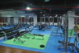 Strumentazione di concentrazione di ginnastica/strumentazione di forma fisica prezzi all'ingrosso/banco pratico messo Tz-5016